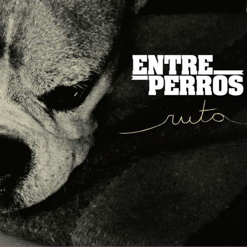 Entre perros rock's avatar