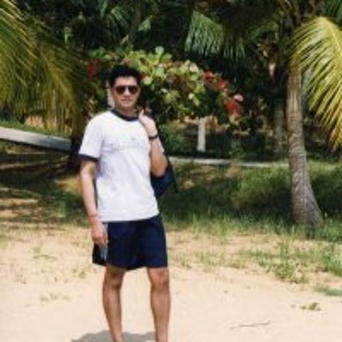 D Purushothaman Pillay's avatar