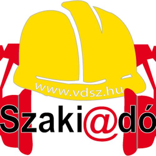 vdszhungary's avatar