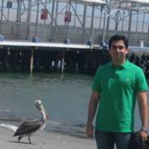 Jaime A Gonzalez's avatar
