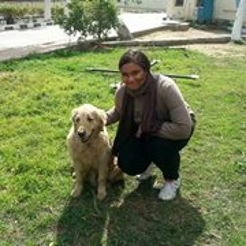 Yomna ElBallal's avatar