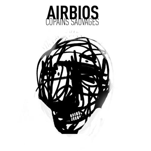 AirBIOS copains sauvages's avatar