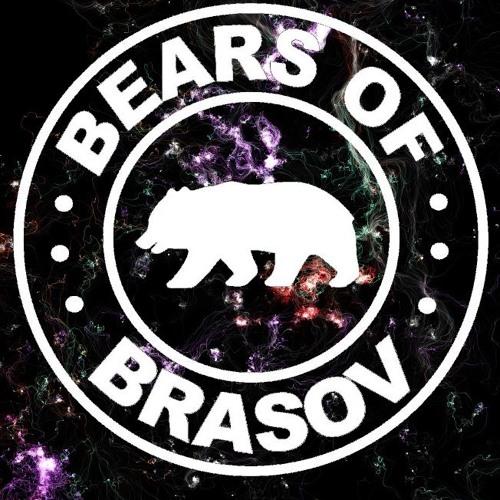Bears of Brasov's avatar