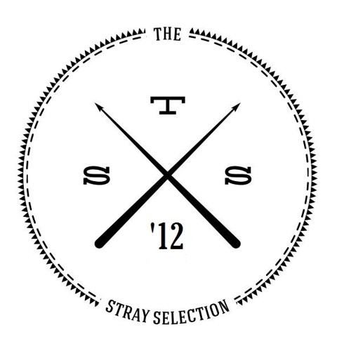 TheStraySelection's avatar