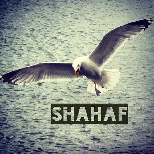 shahafbar-el's avatar