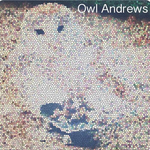 Owl Andrews's avatar