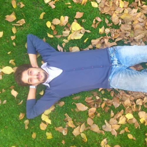 Arash Ghorban Nia's avatar