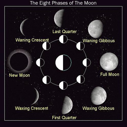 ॐ ☮ Eight Moons ☮ ॐ's avatar