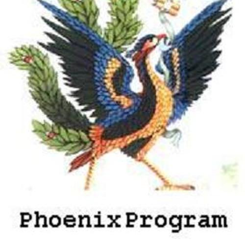 Phoenix Program's avatar