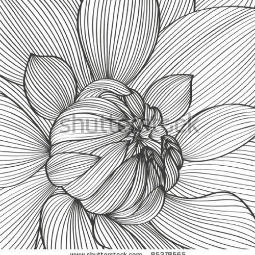 Line Drawing Flower Pattern : Lana del rey young and beautiful orchestral piano cover