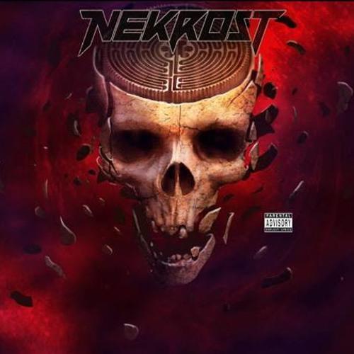 Nekrost's avatar