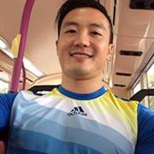 Desmond Vince Tan's avatar
