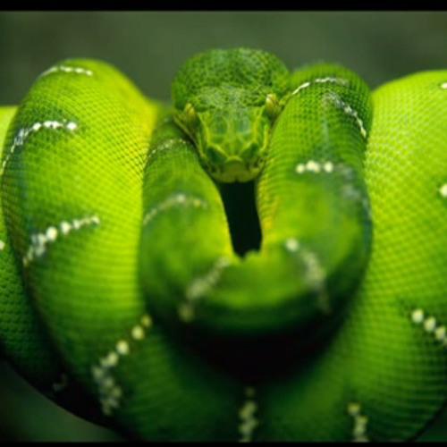 Snakeism's avatar