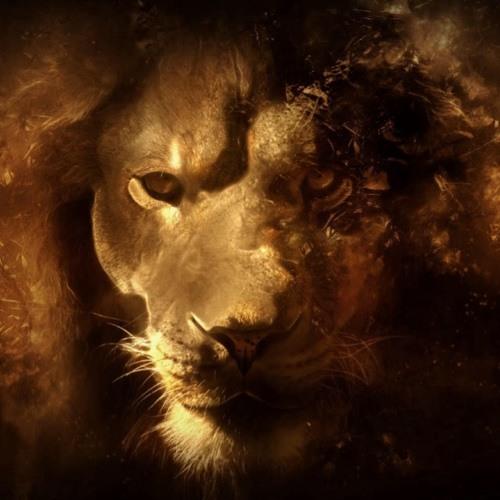 Lion Music 's avatar