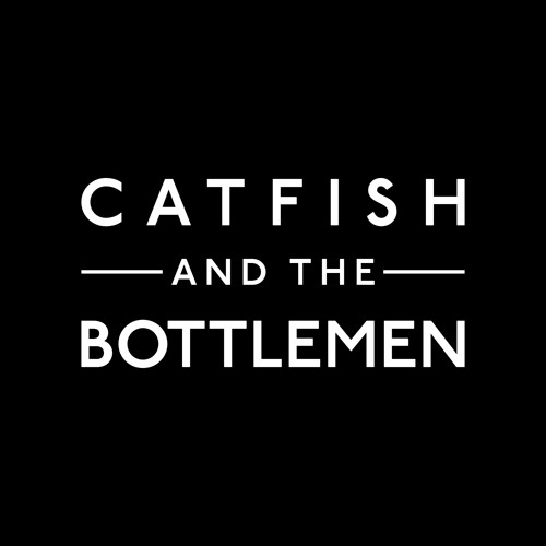 Catfish and the Bottlemen's avatar