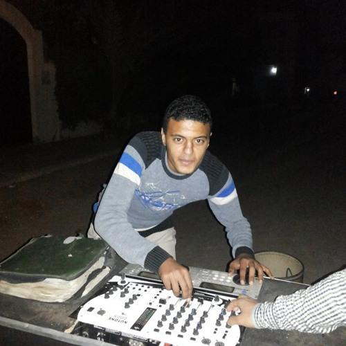 Mohamed ElSayed 255's avatar