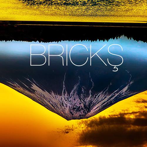 BRICKŞ's avatar