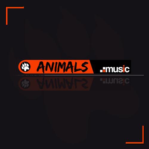 Animals Music's avatar
