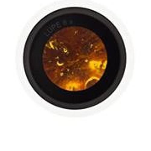 Fi Fi 7's avatar
