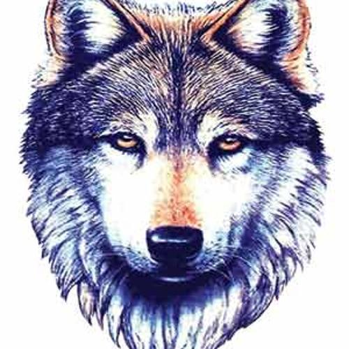 Iamthewolf88's avatar