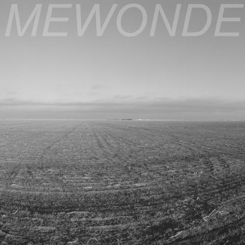 MEWONDE's avatar