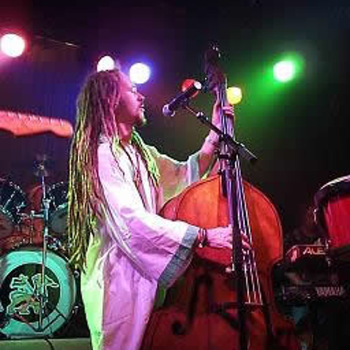 Marcus Reggae Bass's avatar