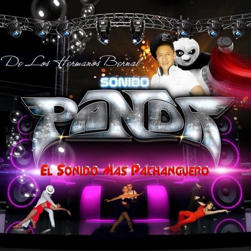sonidopanda's avatar