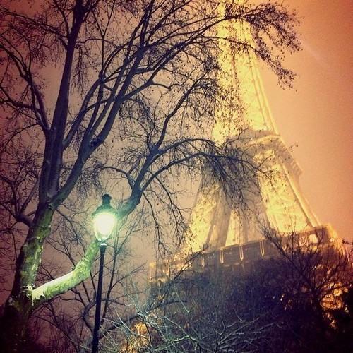Paris Nights's avatar