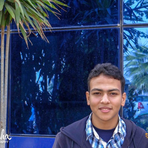 Abdelrahman M. Basiony's avatar