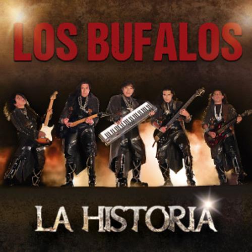 Los Bufalos's avatar