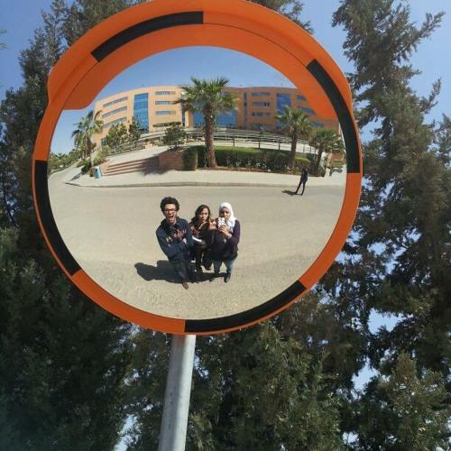 Omnaya Elsherief's avatar