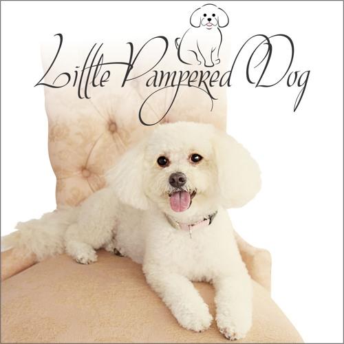 Little Pampered Dog's avatar