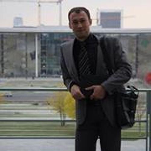 Leonid Rossylnyi's avatar