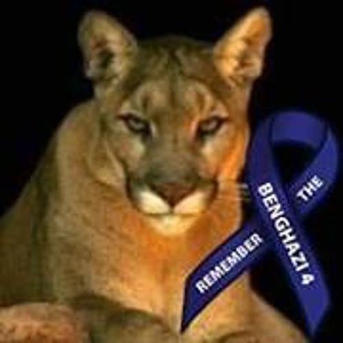 Puma Bydesign's avatar