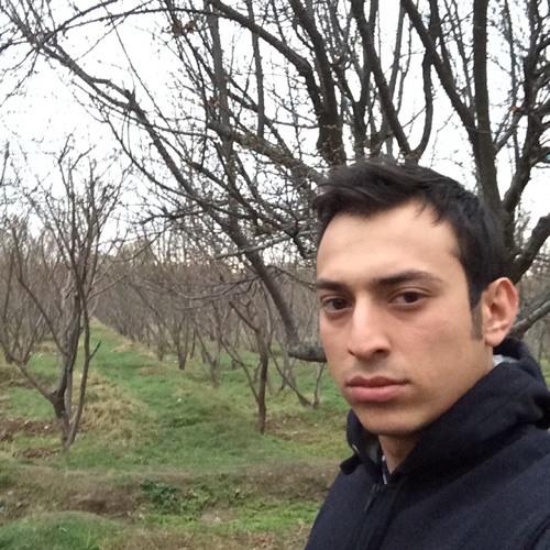 Amir Hosein Shadfarokh's avatar