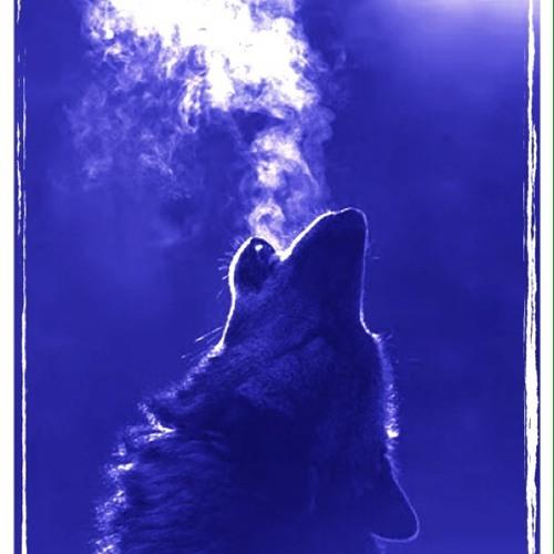 Bad Wolf Rose 9's avatar