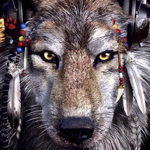 WodyCatts's avatar