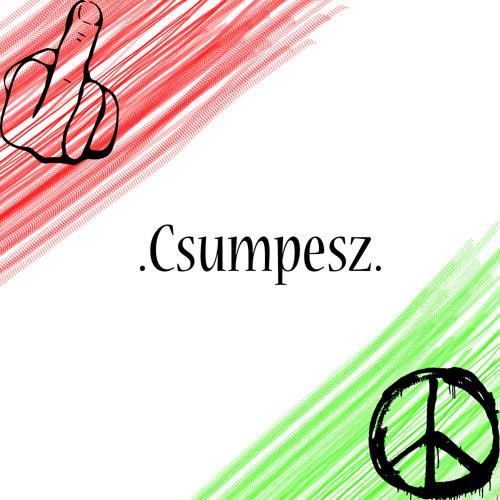 Csumpesz Beats's avatar