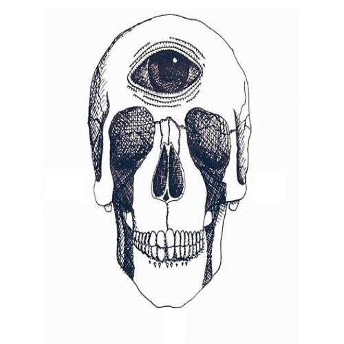 Miral A. Moustafa's avatar