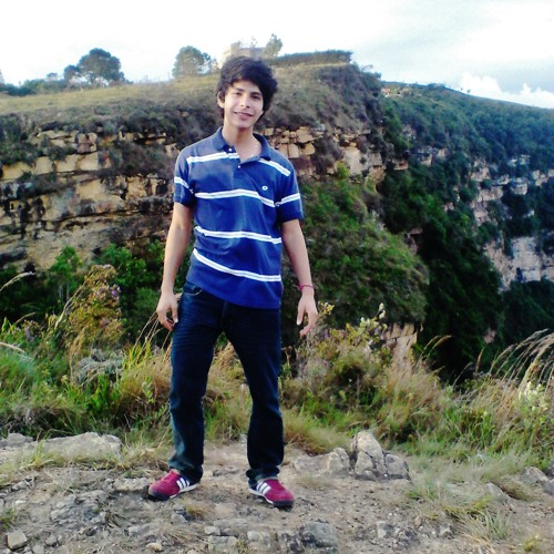 Fredy Bayona Gutierrez's avatar