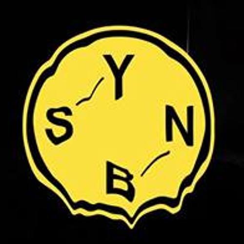 SYBIANN's avatar