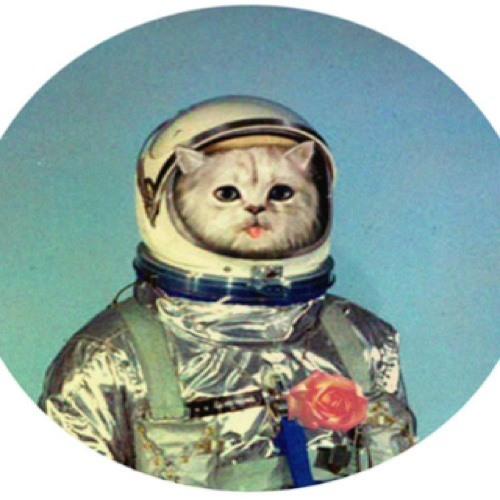 NoahCoadyMC's avatar