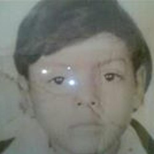 Raul Toledo Marquez's avatar
