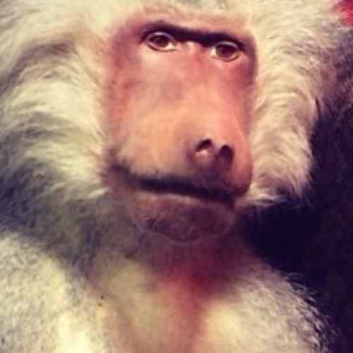 TheManWithTheVoice's avatar