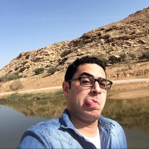 mohamed-eletreby's avatar