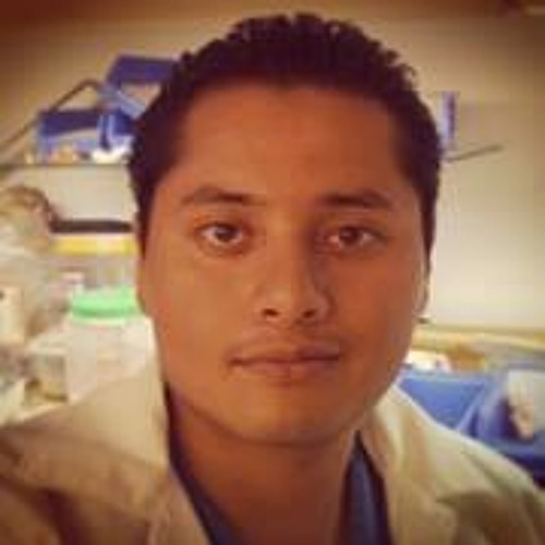 Reynold R. Flores Chablé's avatar