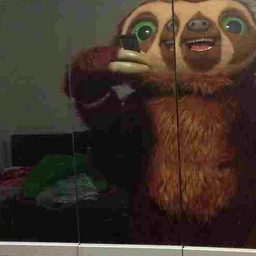 mcdogersun's avatar