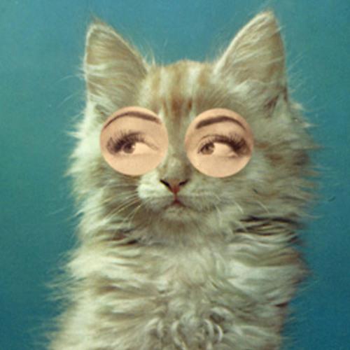 CatGal's avatar