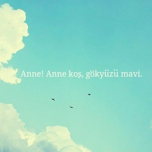 Fulya Yassıbaş's avatar