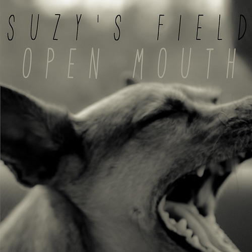SuzysField's avatar